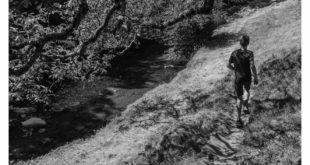 Livres. « Belladone », d'Hervé Bougel : de mémoire de petit garçon